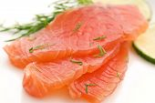 Salmon Slices with Dill and Lime
