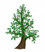 Single Vector tree