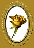 Golden Rose And Oval Frame 10
