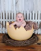 Sweet Baby Sitting In Giant Egg