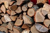 Stack Of Firewood. Closeup Of Chopped Firewood. poster