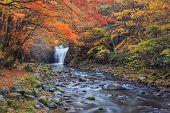 Waterfall With Vibrant Trees In Autumn, Tometaki Waterfall - Kazuno, Akita, Japan poster