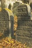 Jewish Cemetery In Libochovice (Czech Republic), Founded In 1583