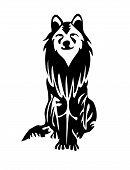 Nice Wolf or Dog