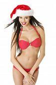 Sexy santa helper in bikini, isolated on white