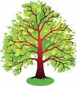 Vector Illustrations Of Tree.eps