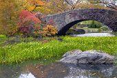 A Stone Foot Bridge