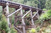 Tasmanian Western Wilderness Railway Bridge