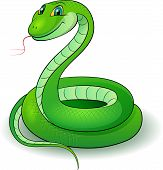 stock photo of snake-head  - Cartoon Illustration of a nice green snake - JPG