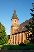 Kant der Kathedrale in kaliningrad