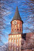 Kants Kathedrale In Kaliningrad