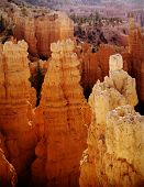 Bryce Canyon National Park Towers At Sunrise, Utah
