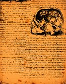 image of leonardo da vinci  - Anatomy art by Leonardo Da Vinci from 1492 on textured background - JPG