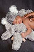 Newborn Baby Boy In An Elephant Costume