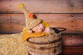 stock photo of scarecrow  - 11 day old newborn baby boy wearing a crocheted scarecrow costume - JPG