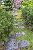 Natural Stone Steps To Frontyard Garden