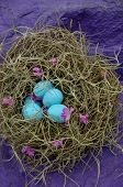 Faux Robin's Blue Eggs