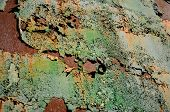 Rusting metal forcing off paint