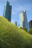 Downtown Green Roof, Vancouver