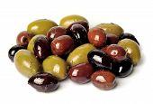 Assorts Olive