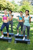 stock photo of step aerobics  - Full length of sporty women doing step aerobics with dumbbells in park - JPG