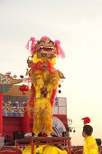 Lion Dancing In Chinese New Year.