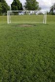 Goal Crease
