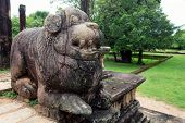 Lion Sculptures Of Polonnaruwa In Sri Lanka