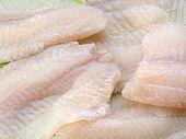 Closeup of tilapia fish fillets