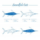 pic of swordfish  - SWORDFISH meat cuts scheme  - JPG