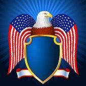 American Eagle Flag Wing Shield