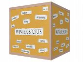 picture of luge  - Winter Sports 3D cube Corkboard Word Concept with great terms such as skating luge slalom and more - JPG