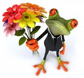 stock photo of prince charming  - Frog - JPG