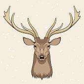 pic of deer head  - Vector illustration of a Deer head on a beige background - JPG