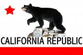 A Genuine Stuffed North American Black Bear AKA Ursus Americanus standing on rocks featuring the official flag of California.