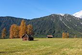 autumn scenic view from Mieming Plateau (Austria Tyrol)