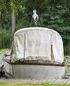 Heron Perched On Boat