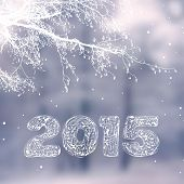 2015 new year vector design
