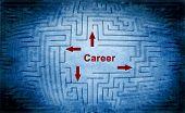 Career Maze Concept
