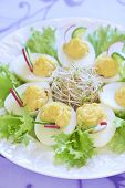 Boiled eggs with salad, sprouts, cucumber and radish