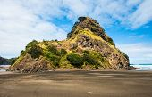 Mighty Lion Rock on the Piha beach near Auckland, New Zealand