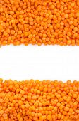 red lentil as background texture