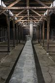 Inside Of Barrack In Auschwitz Concentration Camp, Poland