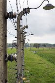 Barbed Wire Fence In Auschwitz Ii-birkenau Concentration Camp In Poland.