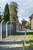 Outdoor Walkway Lined With Electrified Barbed Wire In Auschwitz Camp Ii