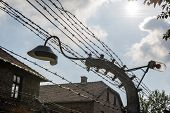 Lamp On A Barbed Wire Encloses The Auschwitz Ii-birkenau Extermination Camp In Brzezinka, Poland.