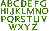 Illustration of the green colored letters of the alphabet on a white background