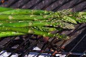 Fresh Grilled Asparagus