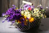 Beautiful wild flowers in basket on wooden background