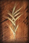 Wheat ears on an old wooden background